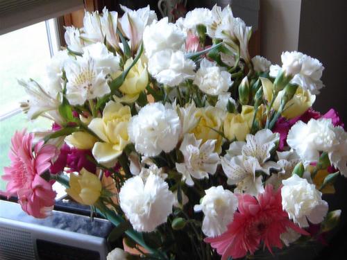 Bachi's Birthday Flowers